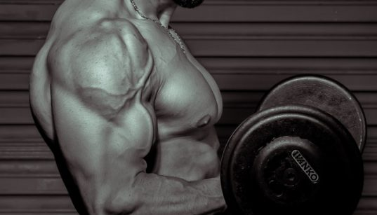 How Exercise Can Help Slowing Muscle Ages?